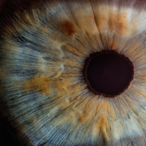 comprehensive-eye-exam_web